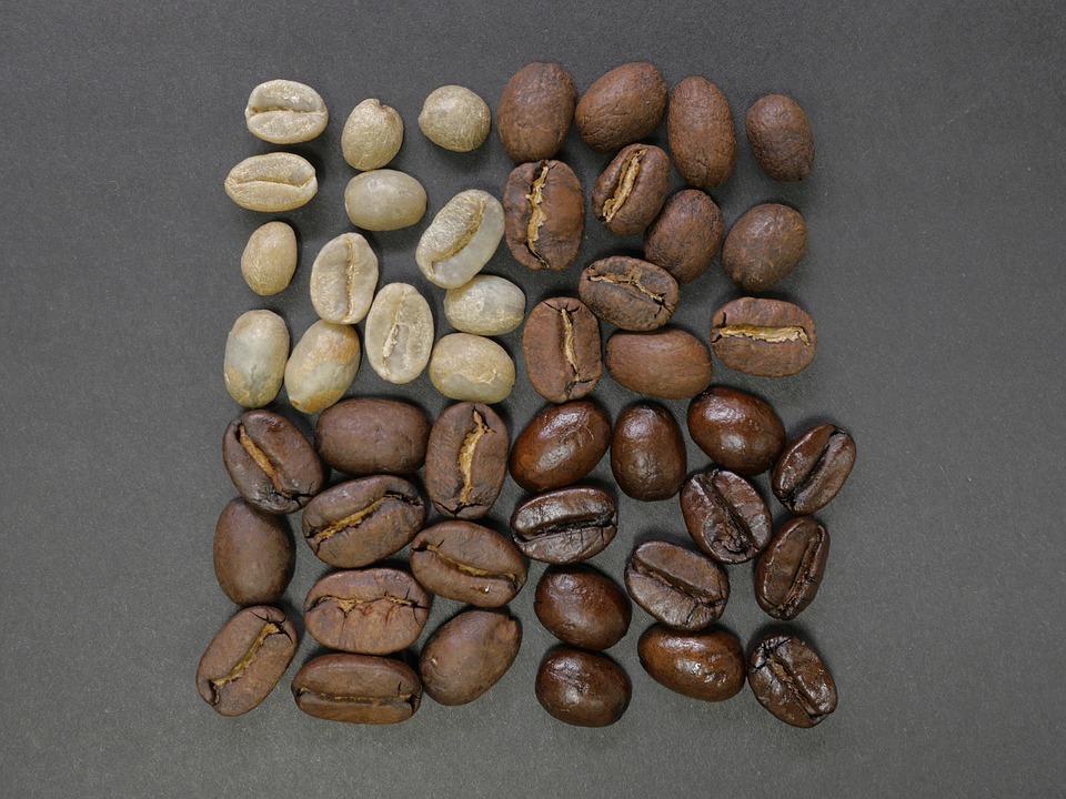 カペ・アラミド?コピ・ルアク?世界一高いコーヒーはどっち?驚愕の正体は・・・