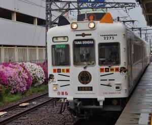 貴志川線ネコ車両