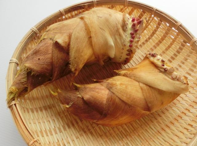筍は刺身で生食できる!選び方と、あく抜き・保存方法!