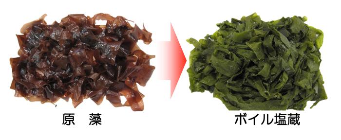 出典:https://www.foomajapan.jp/2015/academic/research/58.html